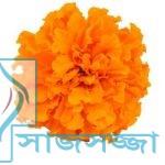 রূপচর্চা : ত্বকের যত্নে গাঁদা ফুল